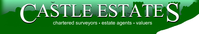 Castles Estate Agents logo