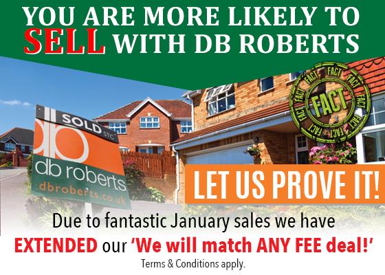 db roberts january campaign
