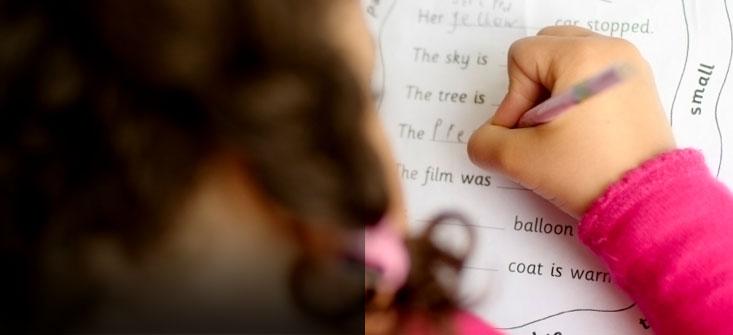 Education Search Programme
