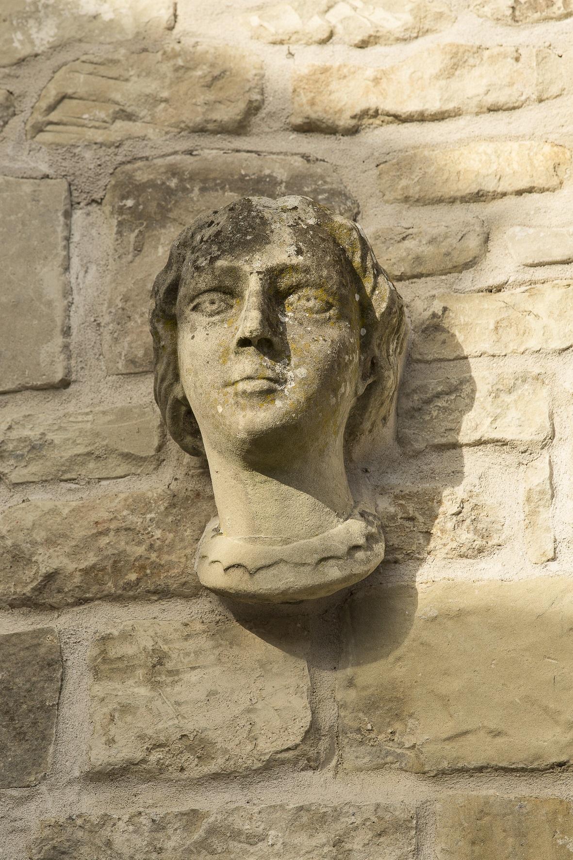 female face resized