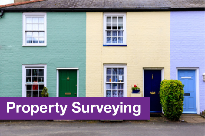 Property Surveying