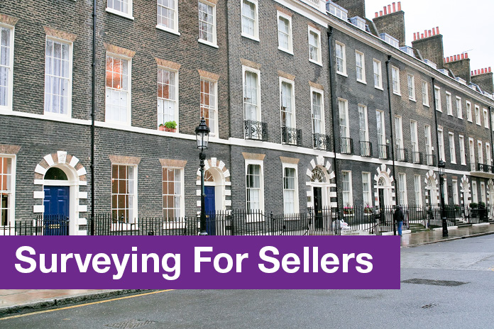 Surveying for Sellers