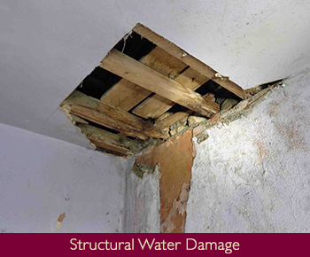 Structural Water Damage
