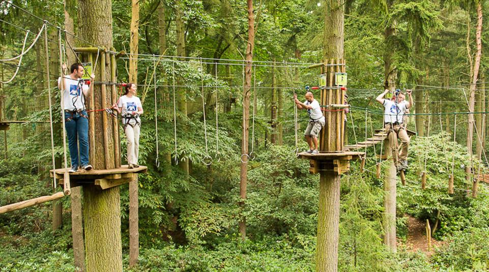 go ape high rope adventures
