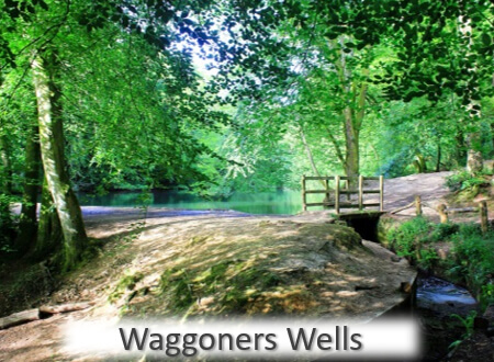 12 Great Local Places - Waggoners Wells