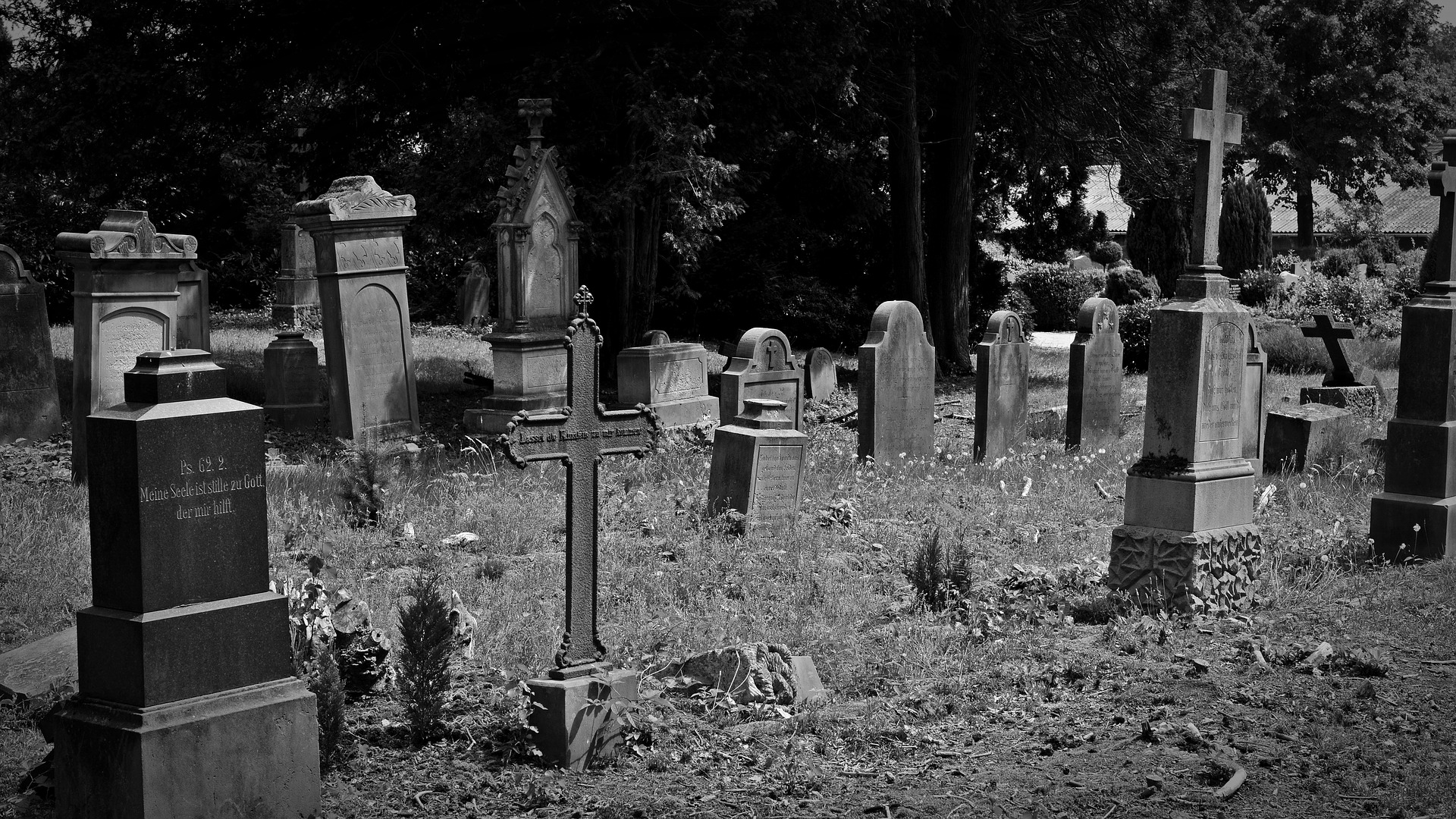 Graves in cemetery