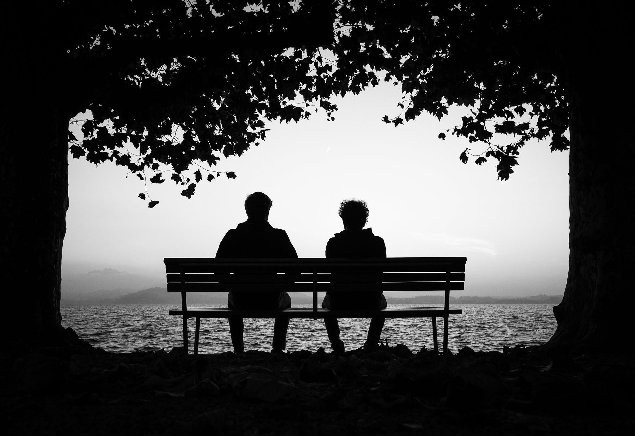 Friends sitting on bench by lake