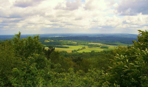 View from Gibbet Hill, Grayshott