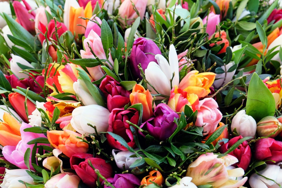 Mother's Day Tulip Flower Bouquet